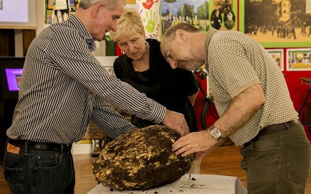 Un tipo encontró un trozo enorme de mantequilla de 2.000 años en un pantano y todavía es comestible