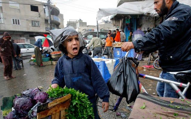 Đang bùng phát siêu bọ kháng thuốc kháng sinh ở Gaza