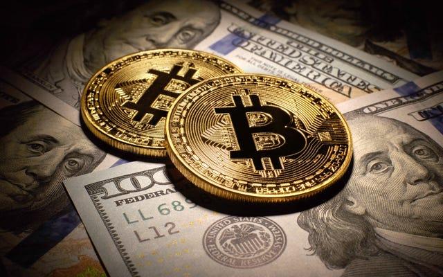 Bitcoin et pourquoi les suprémacistes blancs l'adorent, expliqués