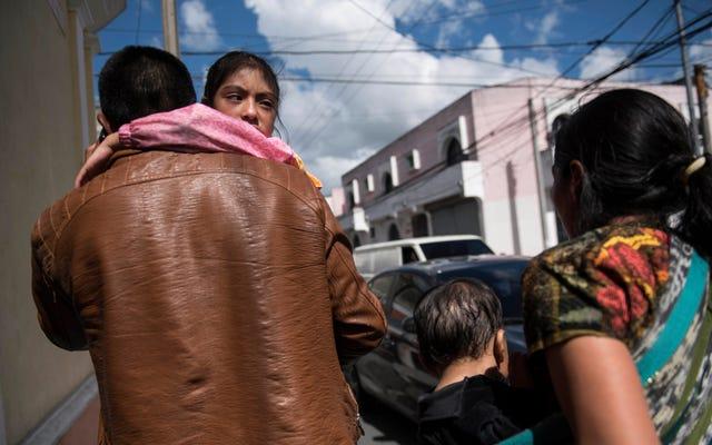 移民の両親は子供たちを安全に保つための壊滅的な試みで子供たちとの再統一を拒否しています