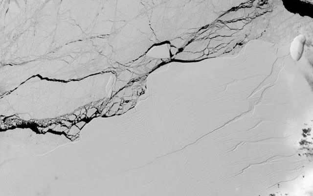 वे अंटार्कटिका में जारी विशाल हिमखंड ए 68 से अलग किए गए बर्फ के पहले बड़े हिस्से का पता लगाते हैं