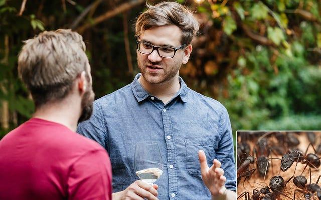 वह आदमी जिसने चीटियों की न्यूफ़ाउंड प्रशंसा के साथ प्रकृति वृत्तचित्र को अभी-अभी देखा है