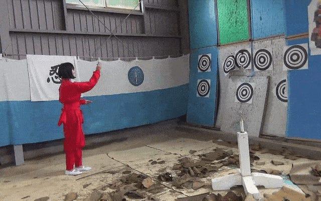 日本には忍者アカデミーがあります