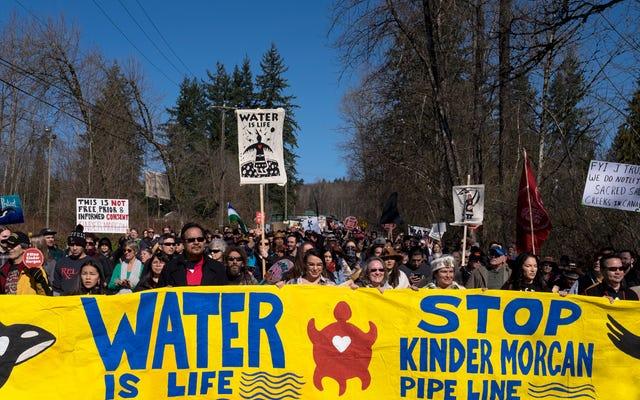 カナダ最大のパイプラインプロジェクトが保留になり、活動家が勝利を収める