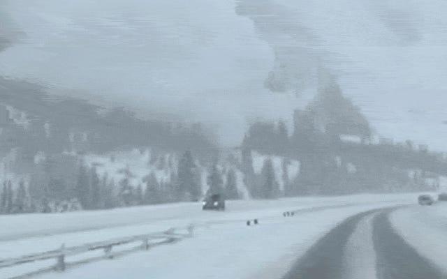 यह तब होता है जब आपकी कार पर एक हिमस्खलन भूमि की तरह दिखता है