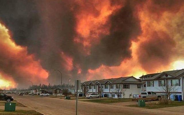 恐ろしい山火事がカナダの都市全体の避難を促す
