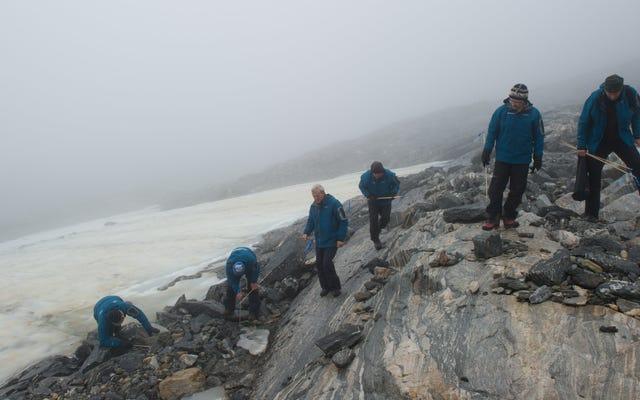 Topniejący lód odsłania przełęcz używaną przez Wikingów, w tym starożytnego psa i smycz