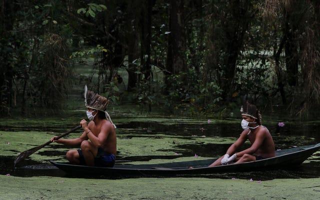 'Новая пандемия': коронавирус угрожает коренным народам Амазонки в связи с приближением сезона пожаров