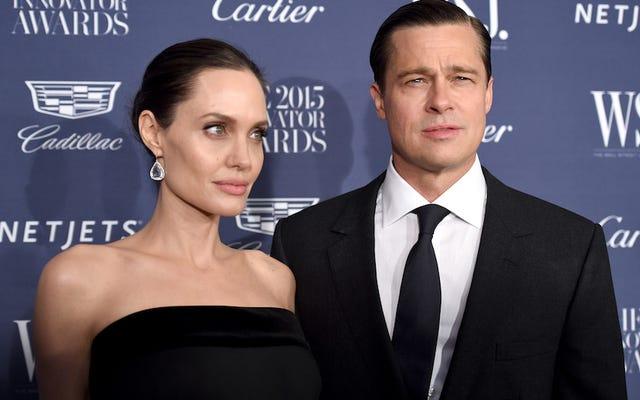ブラッド・ピットとアンジェリーナ・ジョリーの離婚はただ醜い