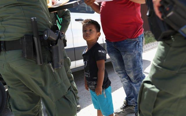 Les avocats ne parviennent toujours pas à trouver les parents de 666 enfants migrants