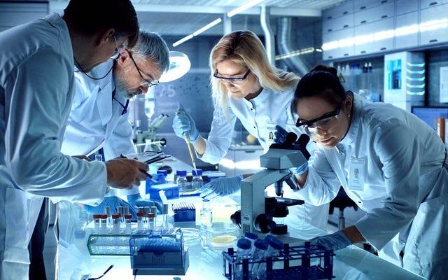 遺伝学者は、実験室の周りにあるDNAのスクラップからハイブリッドクリーチャーを開発します