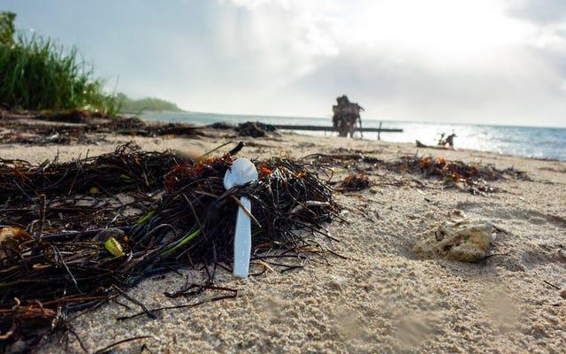 米国はプラスチック汚染で他の国を非難するのをやめるべきです