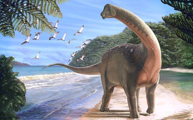 Loài mới của khủng long Titanosaur châu Phi giải quyết bí ẩn kỷ Phấn trắng