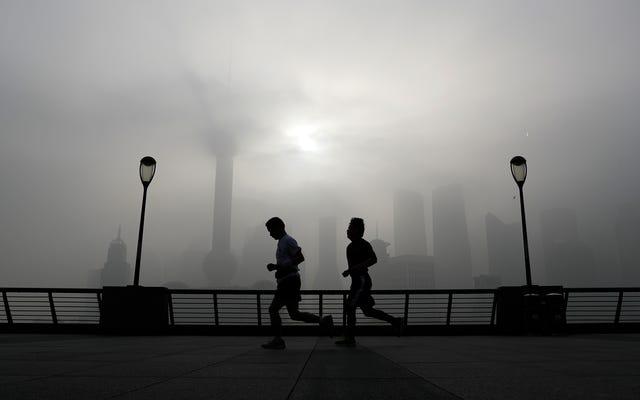 レポート:都市居住者の5人に4人が危険な空気を吸い込んでいる