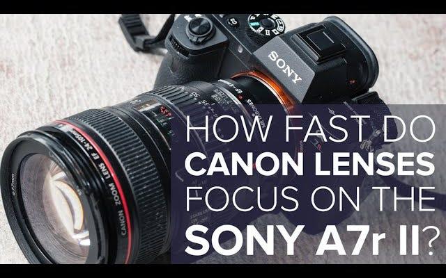 เลนส์ Canon โฟกัสที่ Sony A7r Mark II . ใหม่ได้เร็วแค่ไหน
