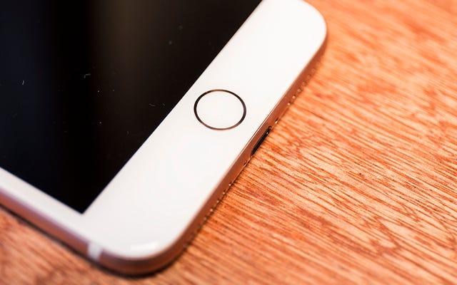 Может ли Apple вернуть Touch ID на iPhone 11?