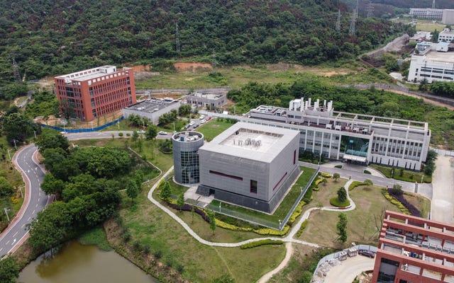 Los científicos de la OMS dicen que la fuga del laboratorio de Wuhan es 'extremadamente improbable' que haya causado la pandemia de Covid-19