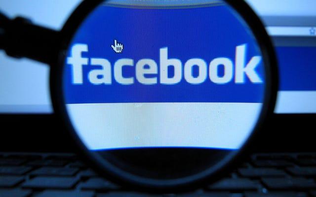 Facebook perd le seul partenaire de vérification des faits aux Pays-Bas à cause des mensonges dans les publicités politiques