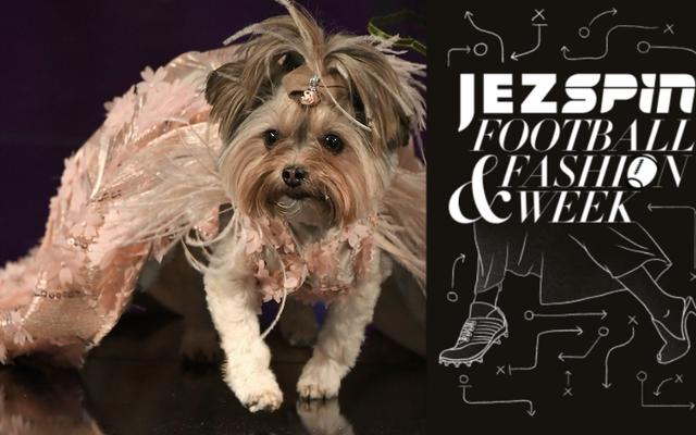 Une femme Jezebel et un homme Deadspin assistent à un défilé de mode pour chiens