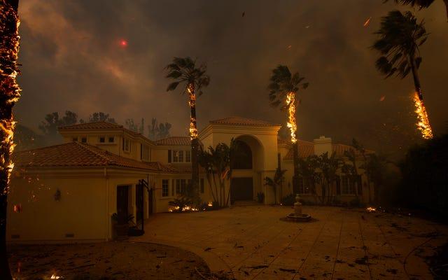 Lo que Trump se equivoca con los incendios forestales de California