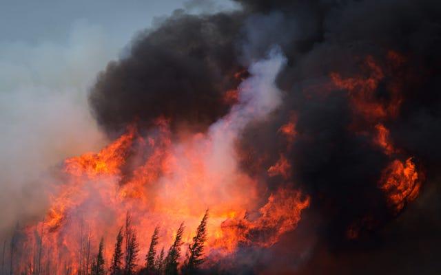 アルバータ州の山火事はサイズが2倍になり、数か月間燃えると予想されています