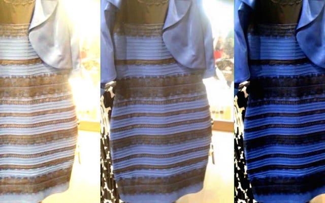 'द ड्रेस' बर्बाद हुए मेरे जीवन के 1 साल हो गए