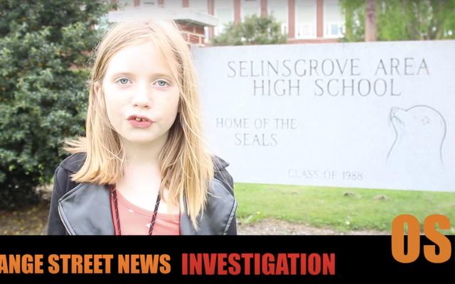 10歳の犯罪記者HildeLysiakもビデオにピボットしました