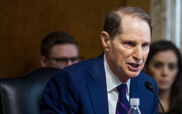 Сенатор Виден предупреждает, что таргетированная реклама в Facebook представляет собой «изощренную» угрозу выборам в США