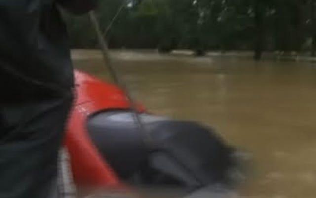 Bardzo chłodny bohater radykalnie ratuje kobietę i psa przed tonącym samochodem w Luizjanie