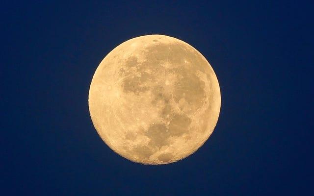今夜のハロウィーンのブルームーンといくつかの惑星を見つける方法も