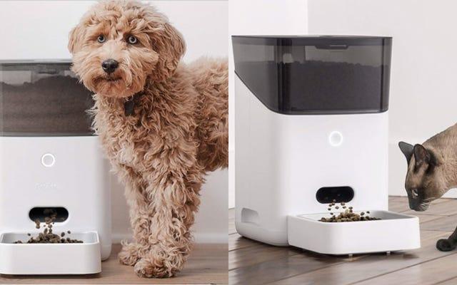Nhận Bộ nạp vật nuôi tự động hỗ trợ Alexa chỉ với $ 85