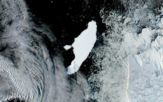 世界最大の氷山はちょうど赤ん坊を持っていた