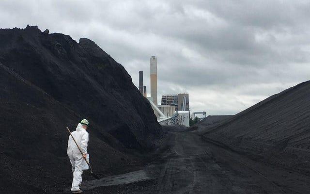 70人近くの活動家が、ニューイングランド最大の石炭火力発電所の1つから石炭を盗もうとして逮捕されました