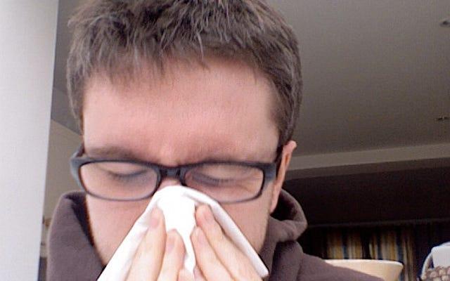 Успокойте больной нос с помощью кокосового масла