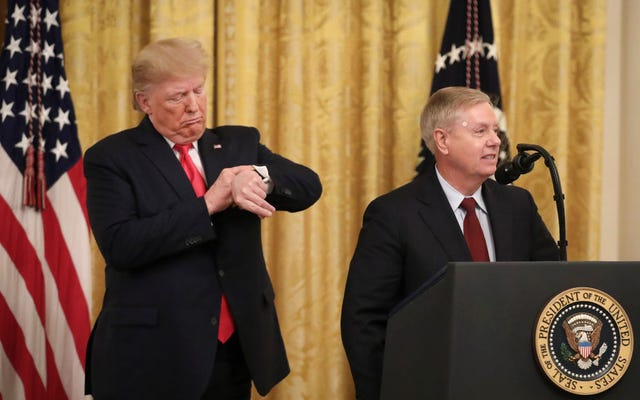 Fox News cortó a Lindsey Graham en medio de él suplicando con su culo suplicante