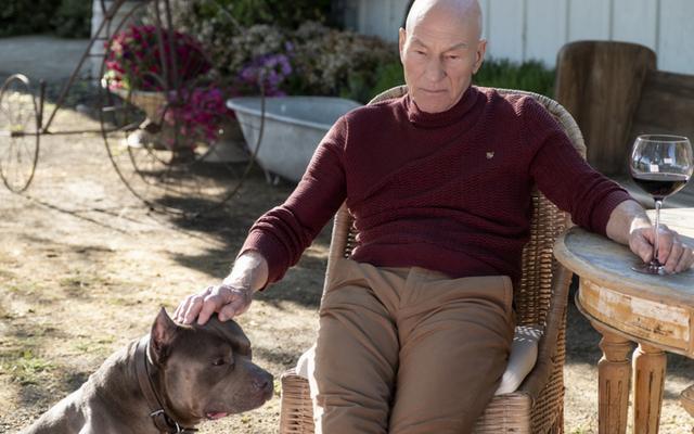 Jean-Luc Picard powrócił, ale czy Star Trek, który zostawił za sobą?