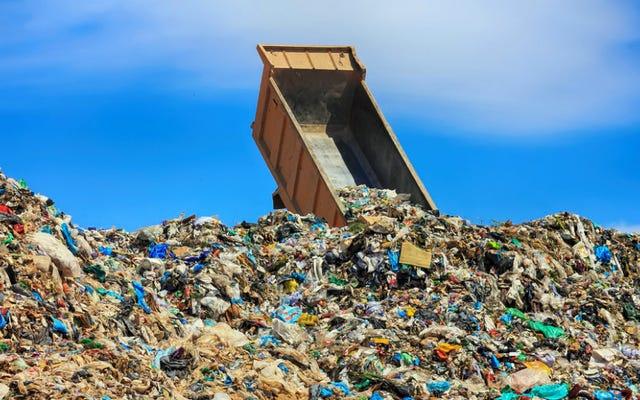 ゴミ収集車のチキンスープ:ごみ収集車からの男性のキャットコール後のカップルの結婚