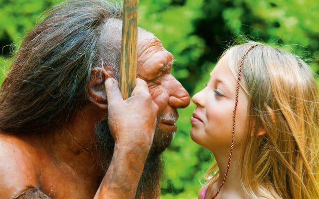 Neandertaller Neden Bizimkilerden Bu Kadar Farklı Yüzlere Sahipti?