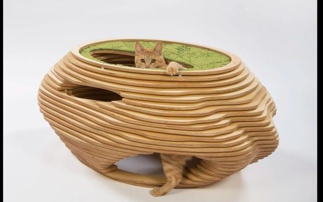 最高のデザインの猫の家を見よどんな猫も完全に無視する