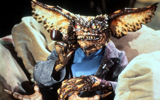 พบกับนักวิชาการ Gremlins 2 ที่มีชื่อเสียงที่สุดในโลก