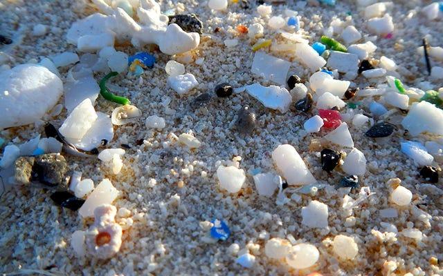 私たちの海には、私たちが認識しているよりも文字通り何百万倍も多くのマイクロプラスチックがあります
