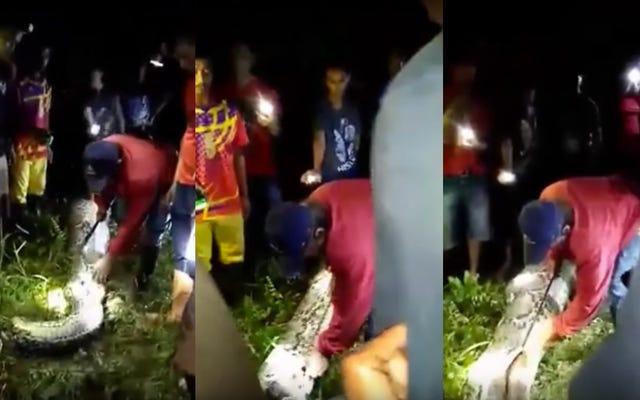 村人たちは巨大なヘビの腹で行方不明の男の死体を見つける