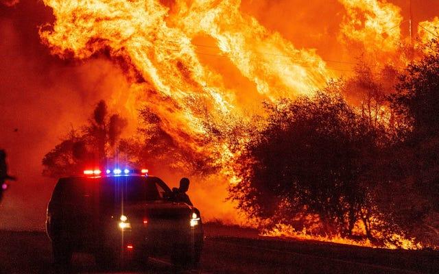 Kebakaran Terbesar dalam Sejarah California Sedang Terjadi Saat Ini