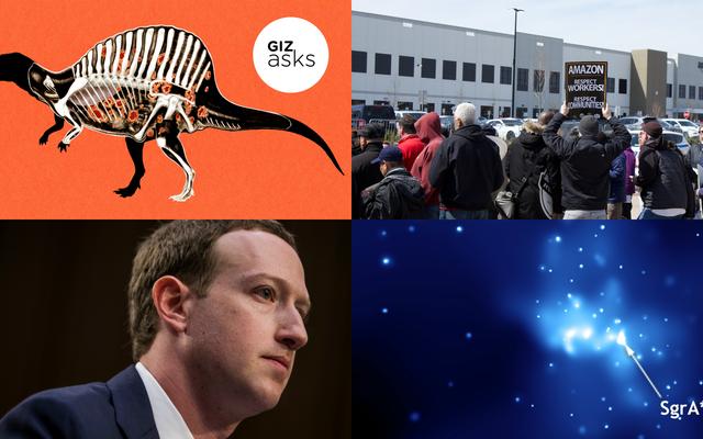 माइक्रोसॉफ्ट, फ़ार्स्केप, और न्यू एयरपॉड्स पर मिसोगिनी: सप्ताह की सर्वश्रेष्ठ गिज़्मोडो कहानियां