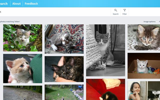 CC検索で無料の画像を探す