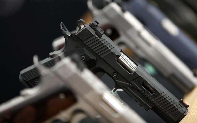 Survei Menemukan Hampir Semua Orang Ingin Kontrol Senjata Lebih Banyak, Termasuk Pemilik Senjata