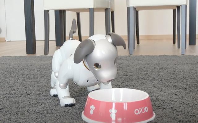 सोनी उपयोगकर्ताओं को अपने रोबोट कुत्तों के लिए आभासी भोजन खरीदने की सुविधा देता है