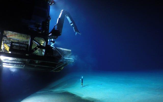 過去100年間で最大の海底火山への訪問は、深海の謎を明らかにします