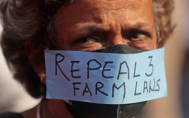 Twitterがインドの農民による抗議に結びついた何百ものアカウントをブロック