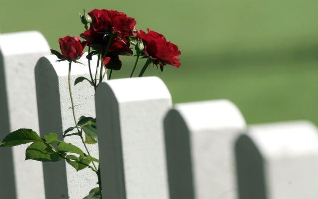 Ожидаемая продолжительность жизни в Америке продолжает снижаться, а количество самоубийств и передозировок наркотиков растет